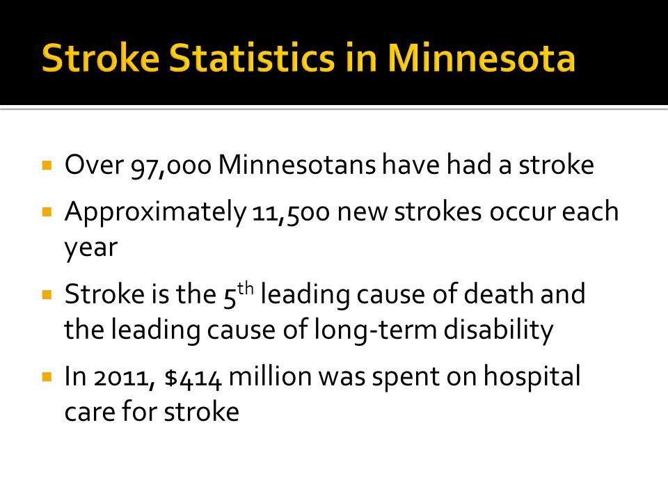 Stroke Statistics in Minnesota