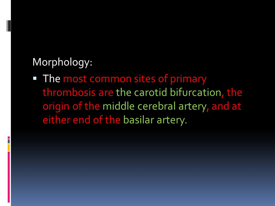 Morphology: