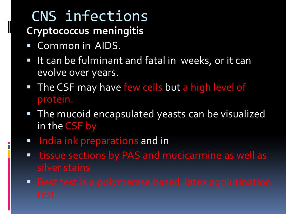 CNS infections Cryptococcus meningitis Common in AIDS.