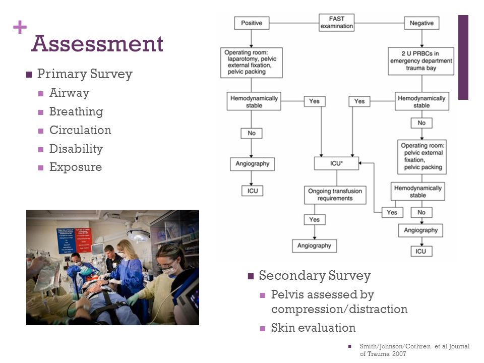 Assessment Primary Survey Secondary Survey Airway Breathing