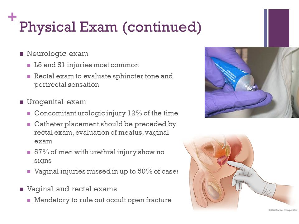 Physical Exam (continued)