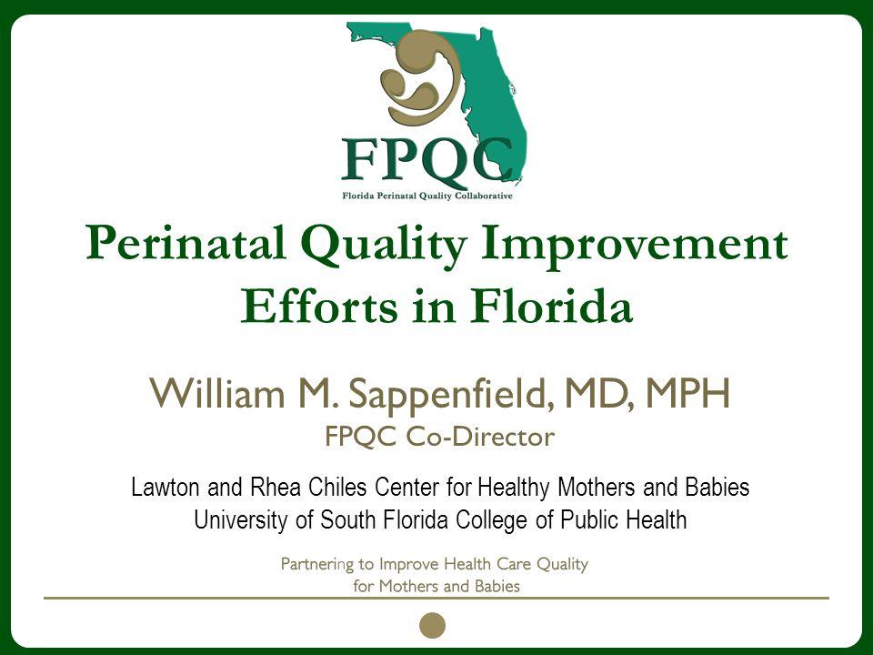 Perinatal Quality Improvement Efforts in Florida