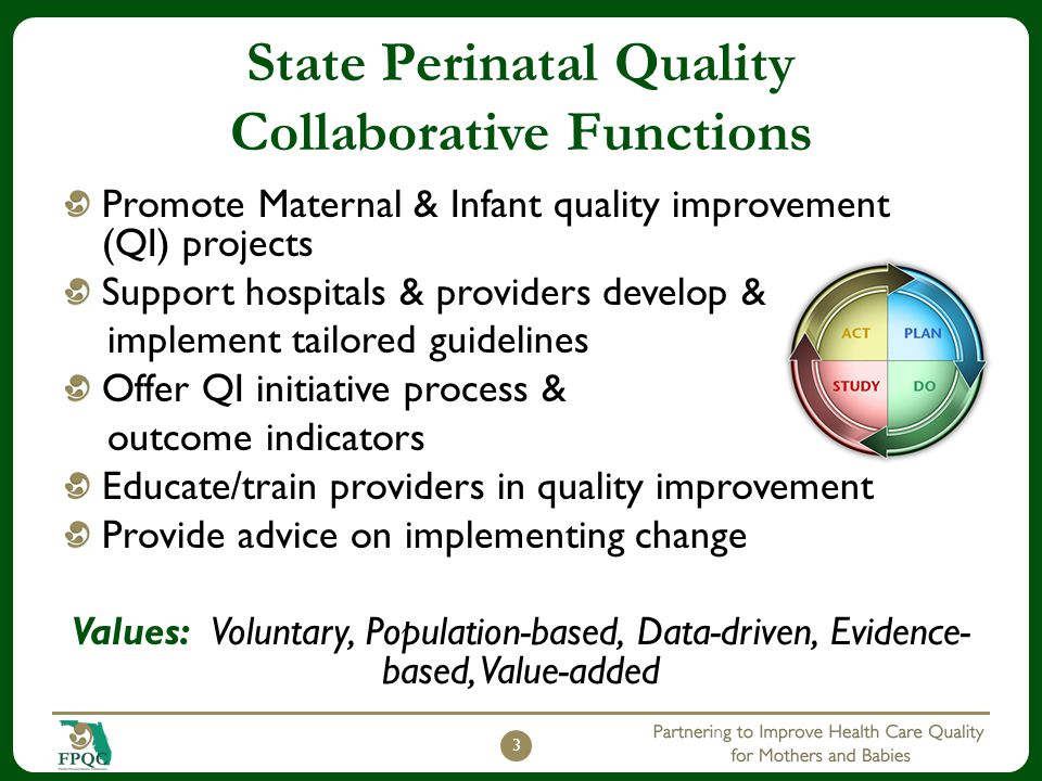 State Perinatal Quality Collaborative Functions