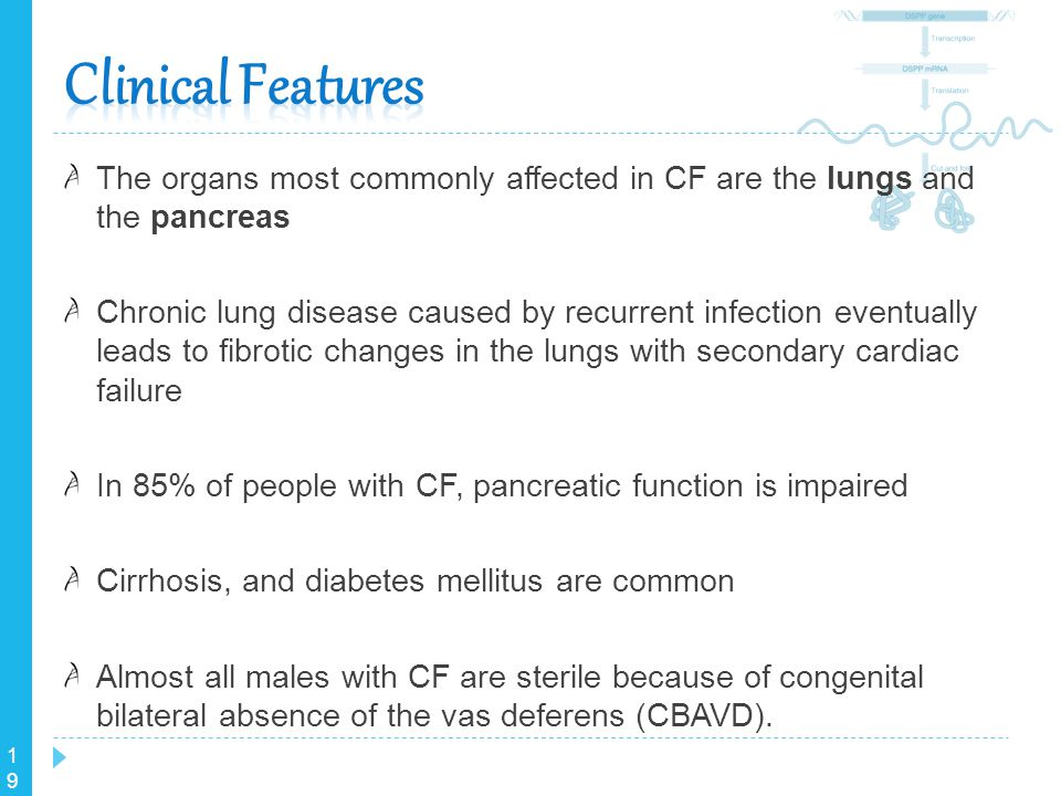 Clinical Features The organs most commonly affected in CF are the lungs and the pancreas.