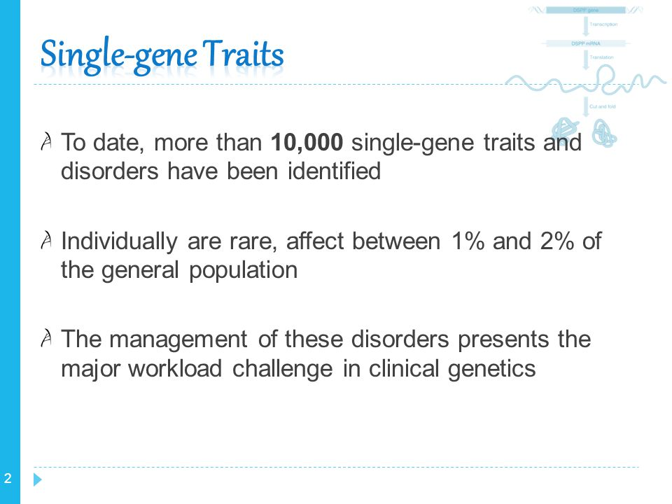 Single-gene Traits To date, more than 10,000 single-gene traits and disorders have been identified.