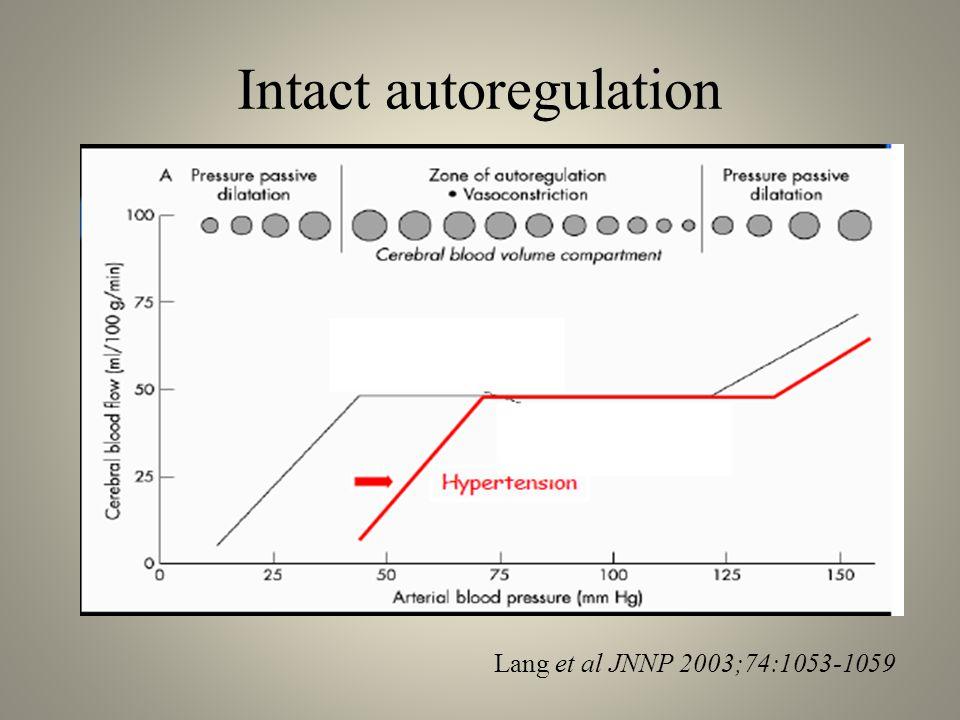 Intact autoregulation