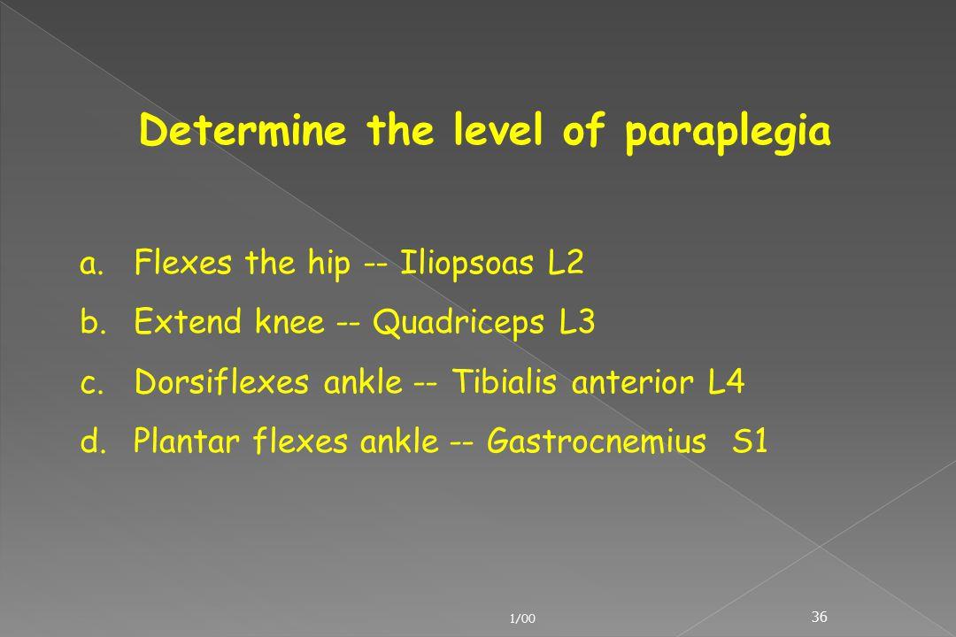 Determine the level of paraplegia