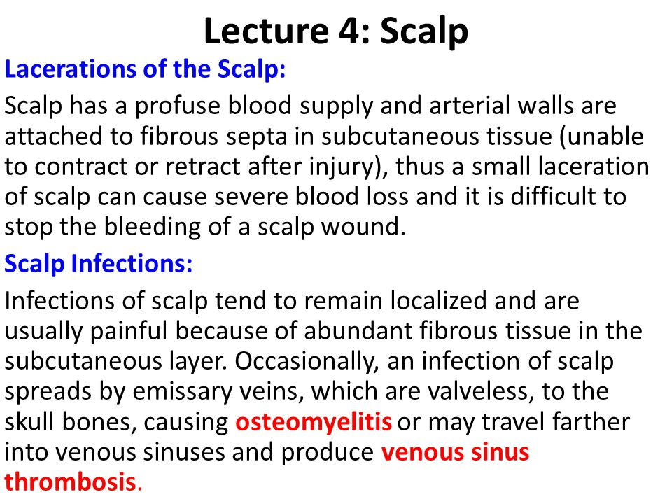 Lecture 4: Scalp