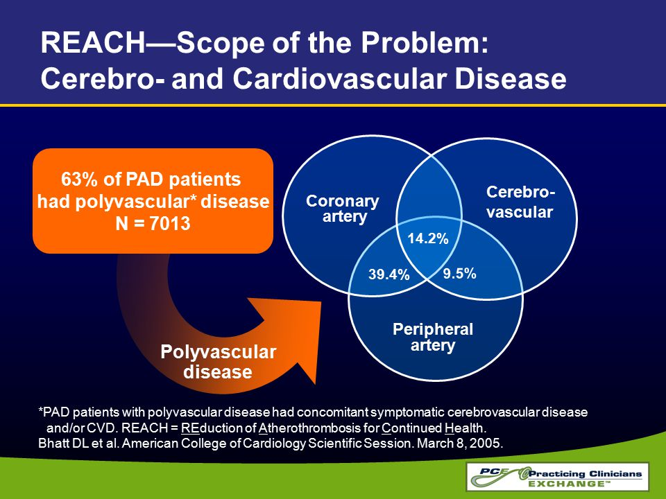 REACH—Scope of the Problem: Cerebro- and Cardiovascular Disease
