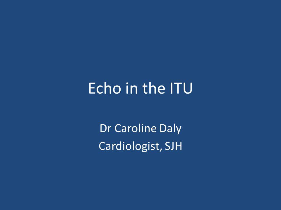 Dr Caroline Daly Cardiologist, SJH