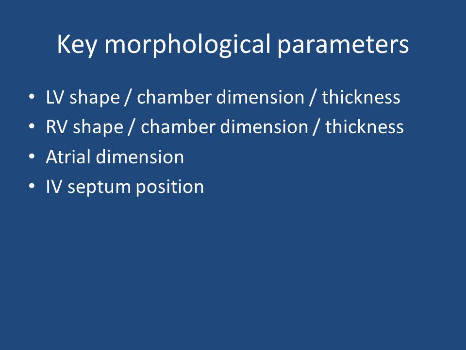 Key morphological parameters