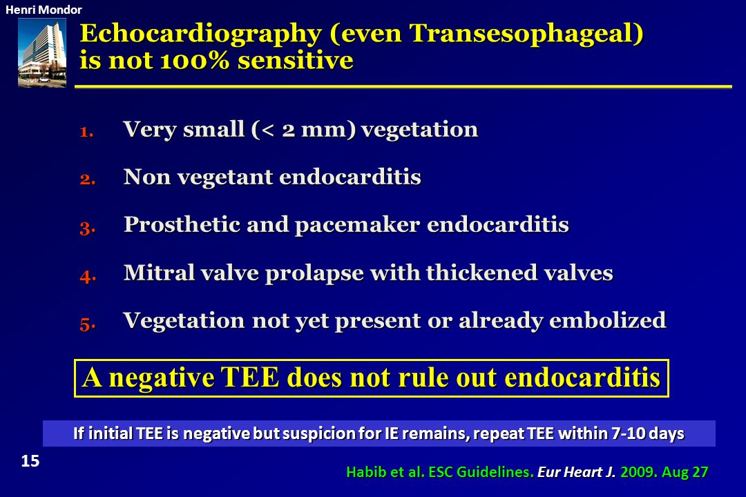 A negative TEE does not rule out endocarditis