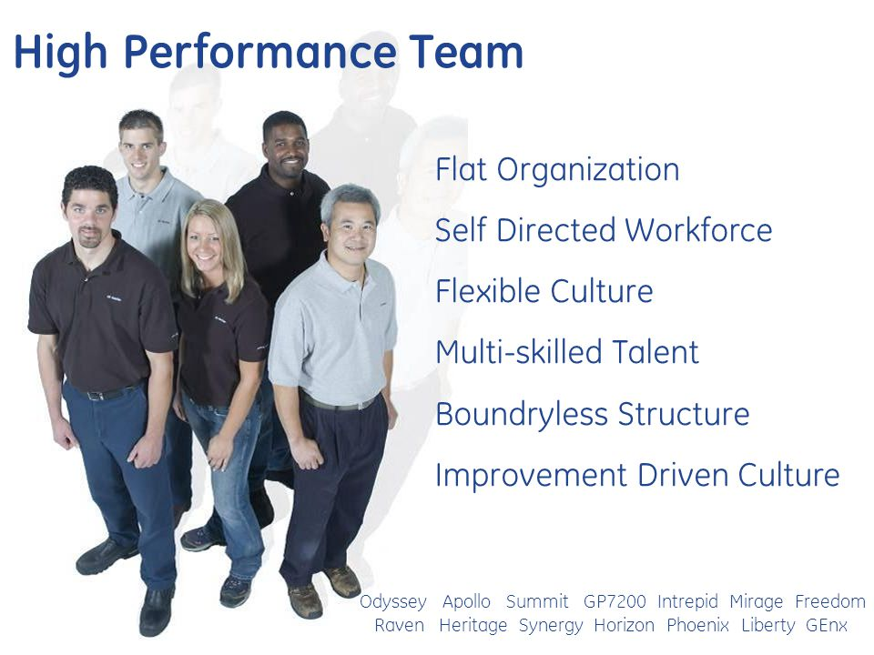 High Performance Team Flat Organization Self Directed Workforce