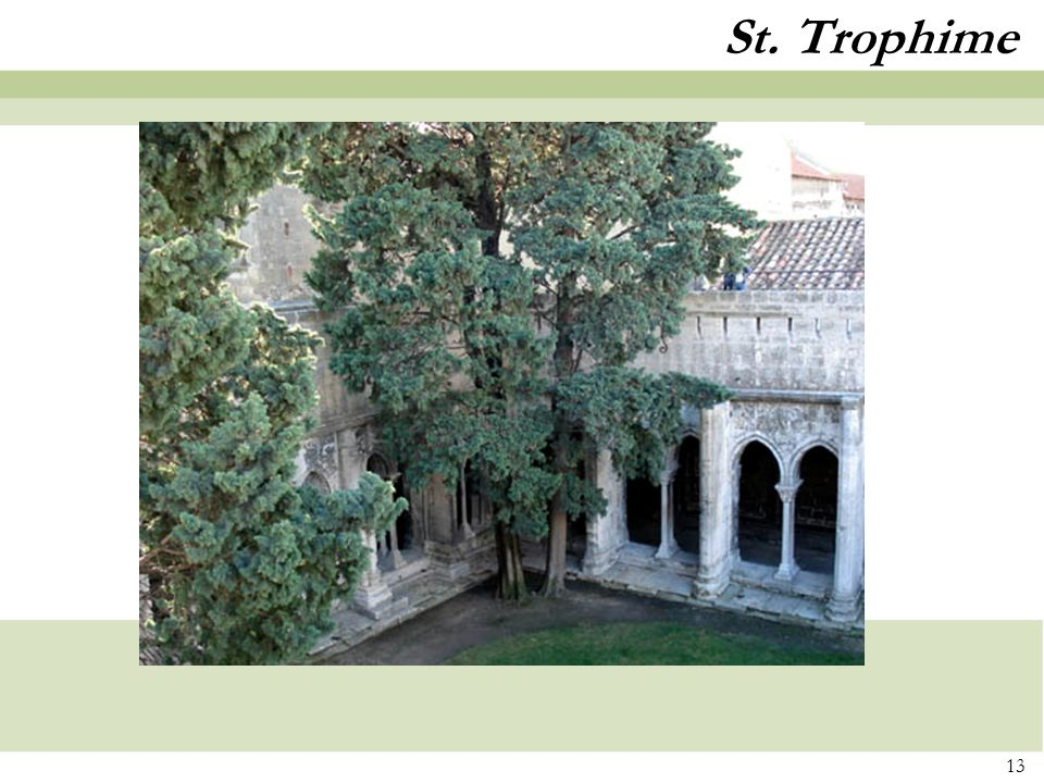 St. Trophime