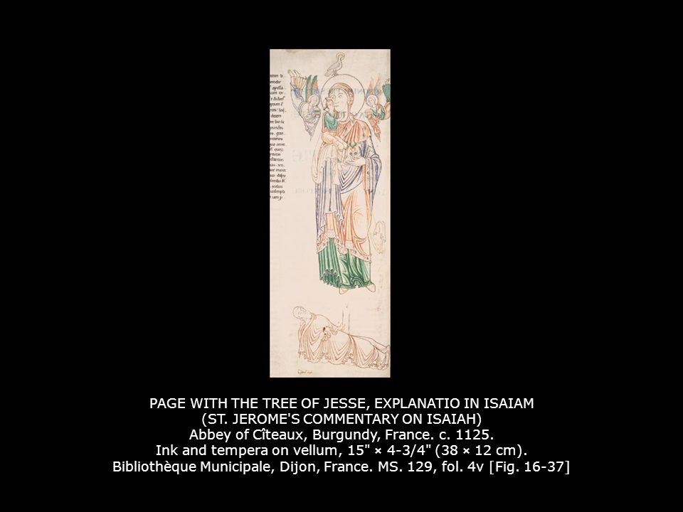 PAGE WITH THE TREE OF JESSE, EXPLANATIO IN ISAIAM (ST