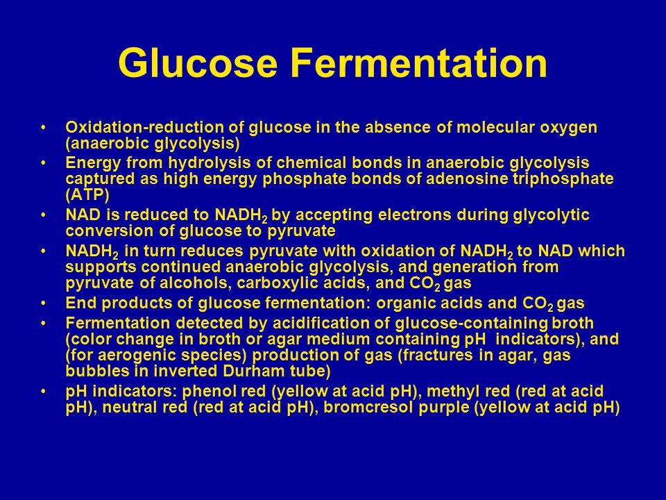 Glucose Fermentation Oxidation-reduction of glucose in the absence of molecular oxygen (anaerobic glycolysis)
