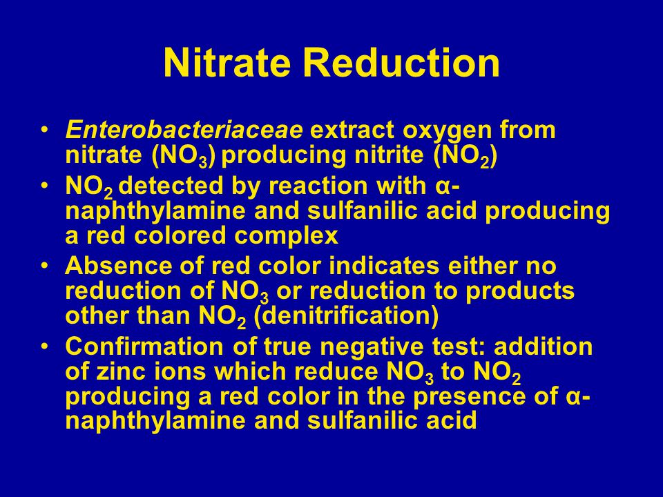 Nitrate Reduction Enterobacteriaceae extract oxygen from nitrate (NO3) producing nitrite (NO2)