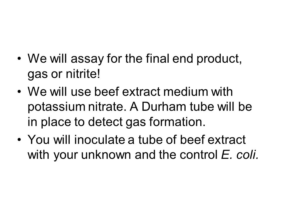 We will assay for the final end product, gas or nitrite!