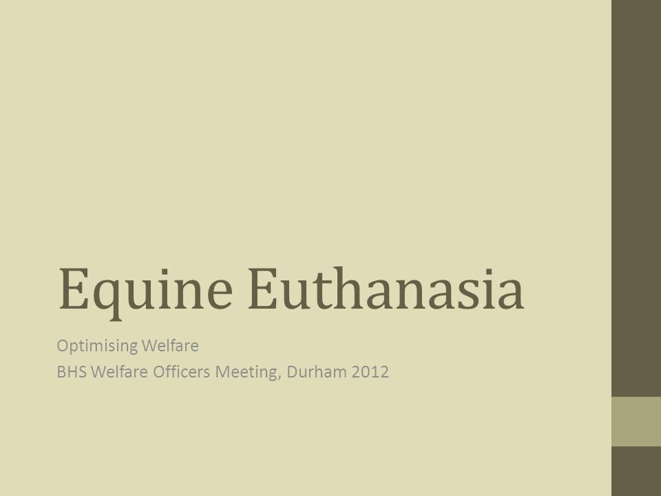 Optimising Welfare BHS Welfare Officers Meeting, Durham 2012