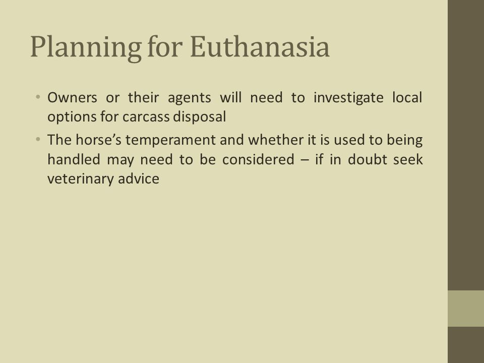 Planning for Euthanasia