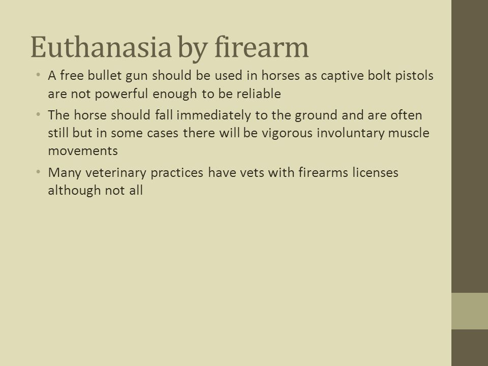 Euthanasia by firearm A free bullet gun should be used in horses as captive bolt pistols are not powerful enough to be reliable.
