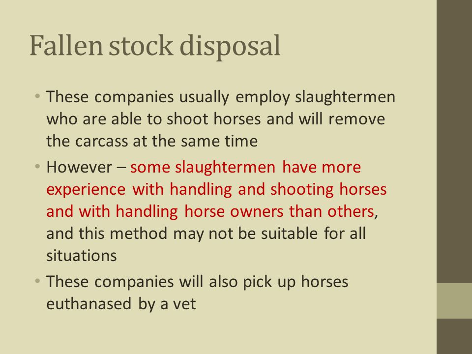 Fallen stock disposal These companies usually employ slaughtermen who are able to shoot horses and will remove the carcass at the same time.