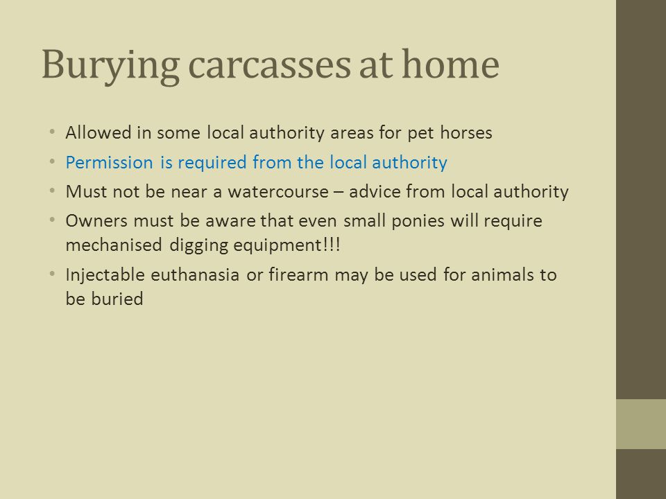 Burying carcasses at home