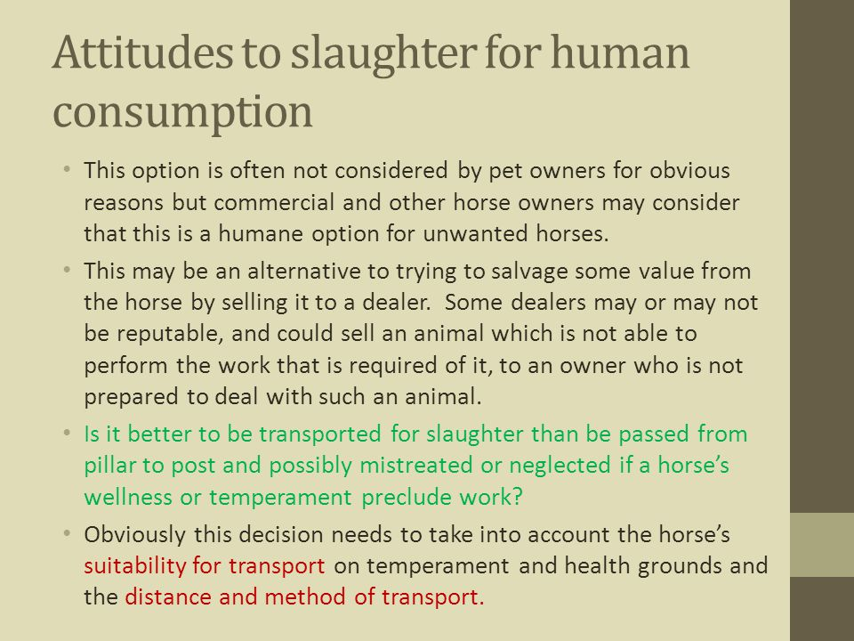 Attitudes to slaughter for human consumption