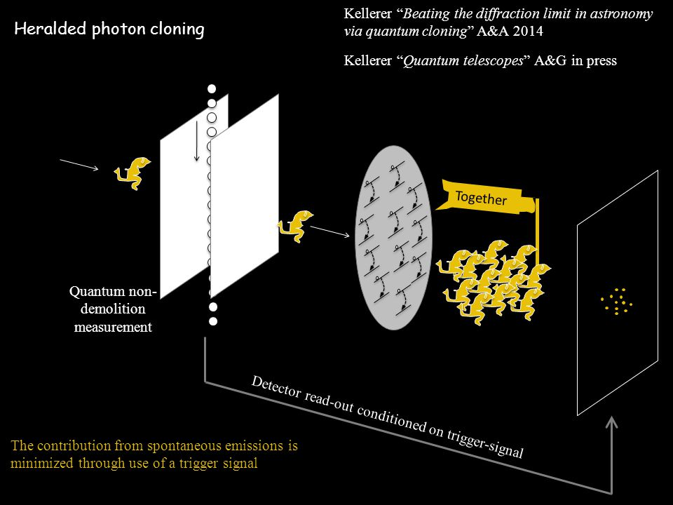 Heralded photon cloning