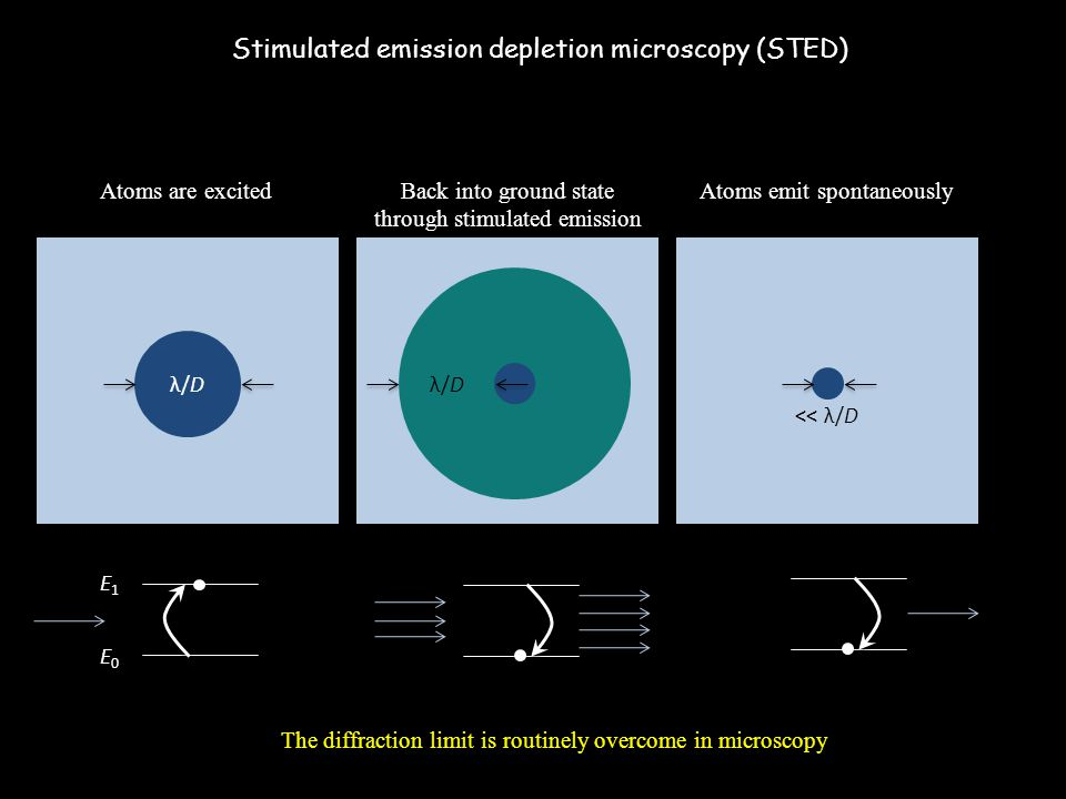 Stimulated emission depletion microscopy (STED)