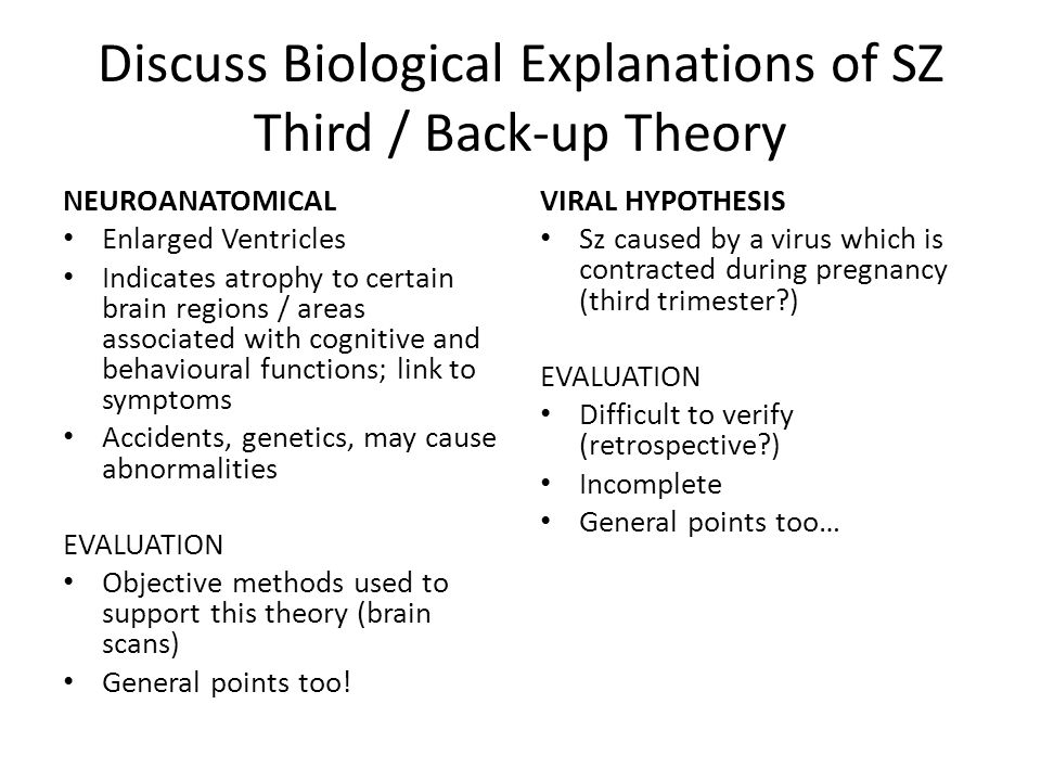 Discuss Biological Explanations of SZ Third / Back-up Theory
