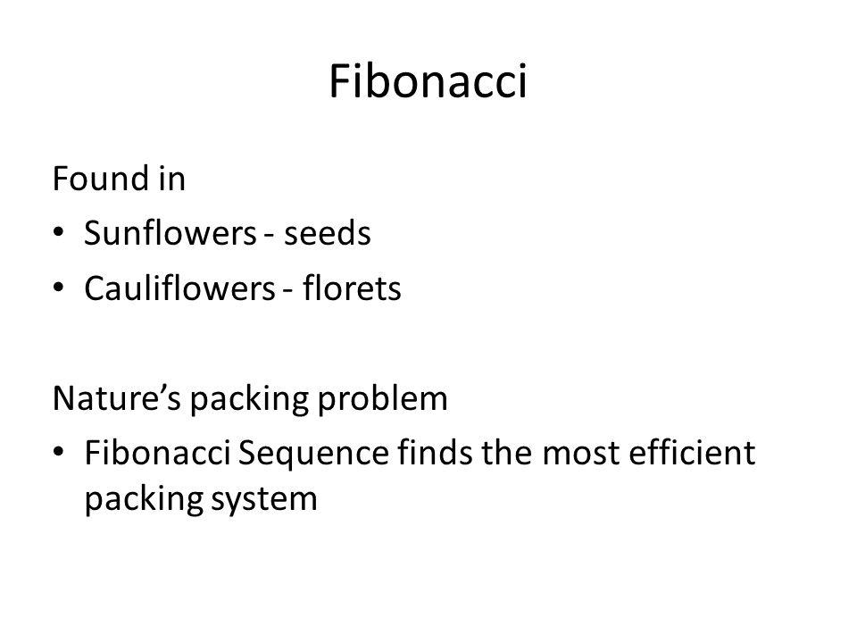 Fibonacci Found in Sunflowers - seeds Cauliflowers - florets
