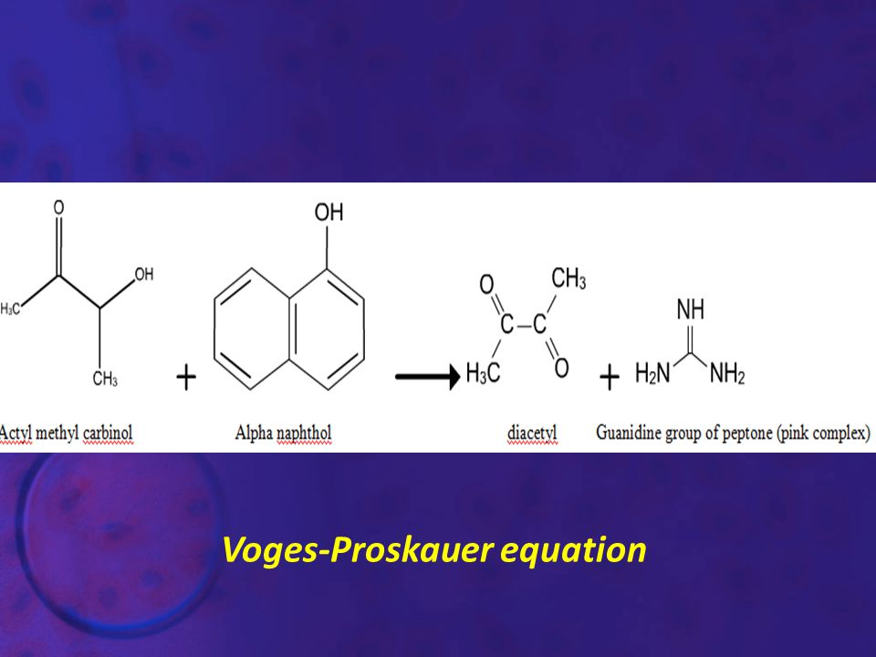 Voges-Proskauer equation