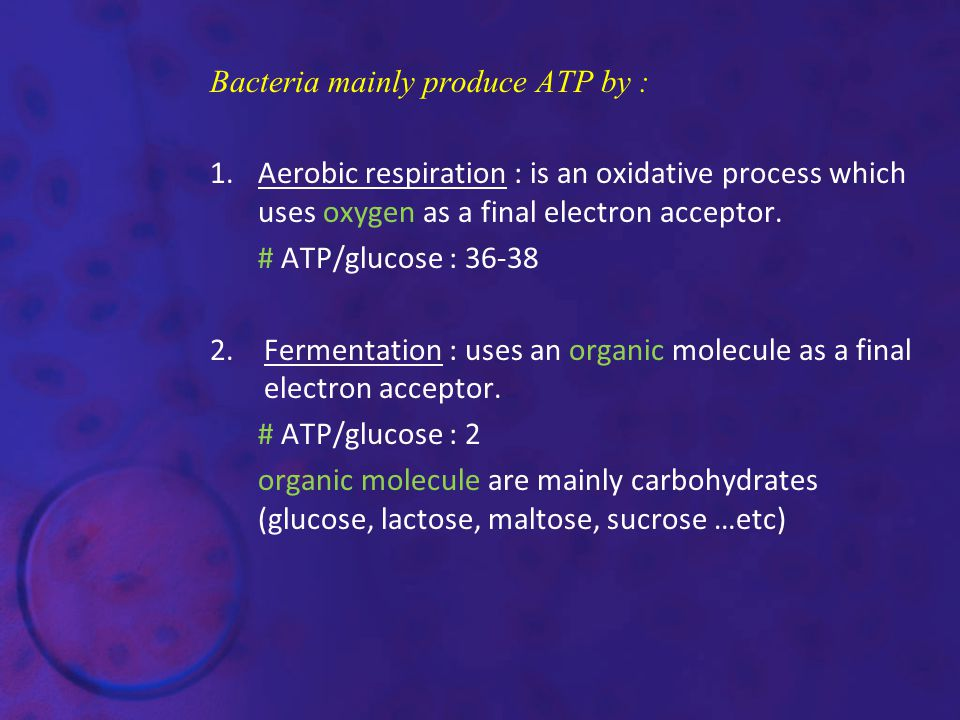 Bacteria mainly produce ATP by :