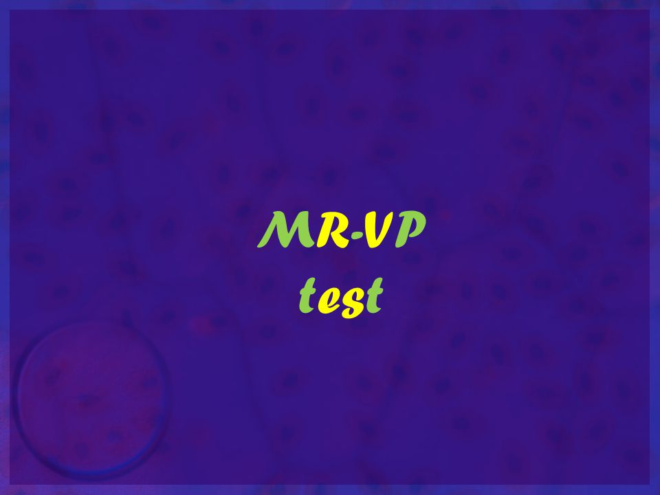 MR-VP test
