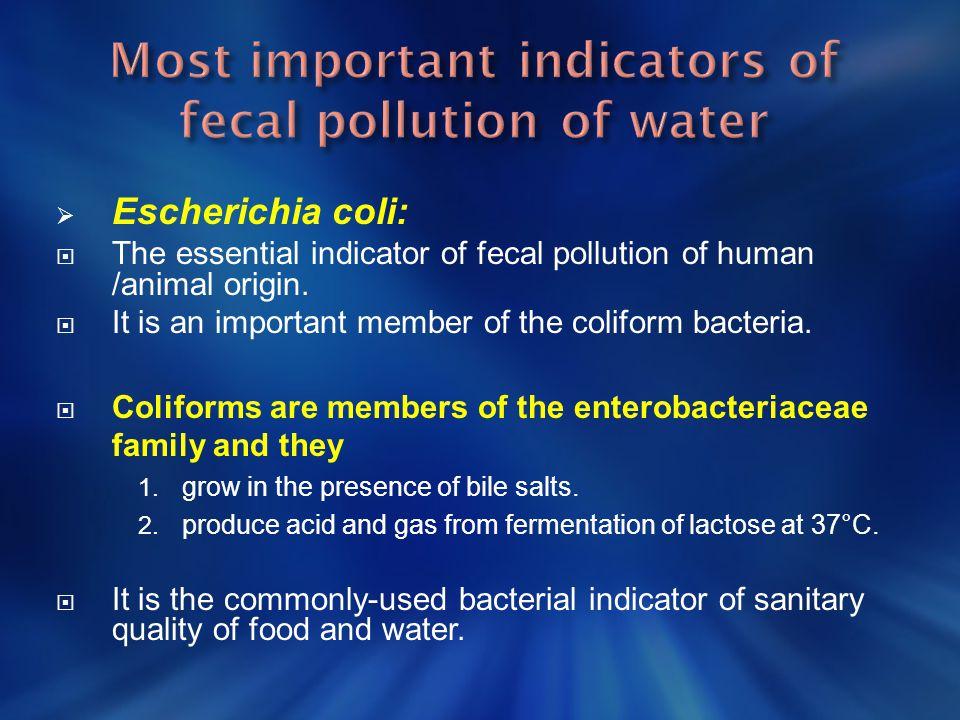 Most important indicators of fecal pollution of water