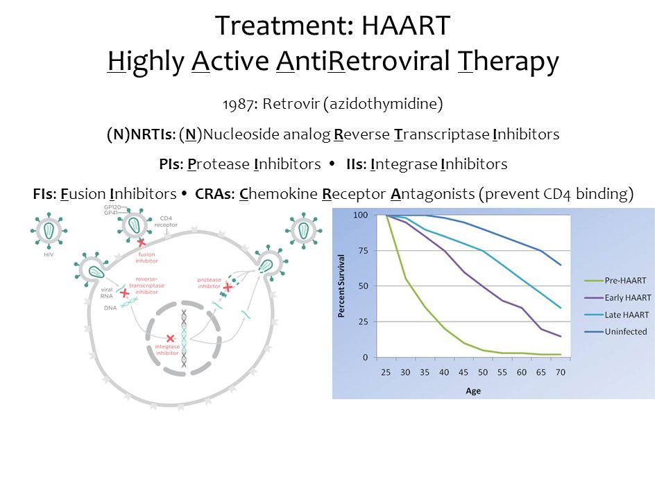 Treatment: HAART Highly Active AntiRetroviral Therapy