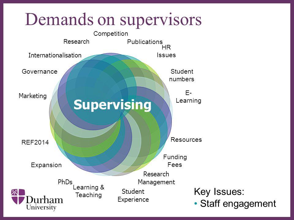 Demands on supervisors