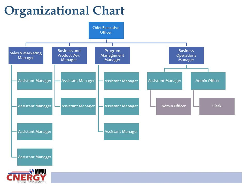 Organizational Chart Chief Executive Officer Sales & Marketing Manager