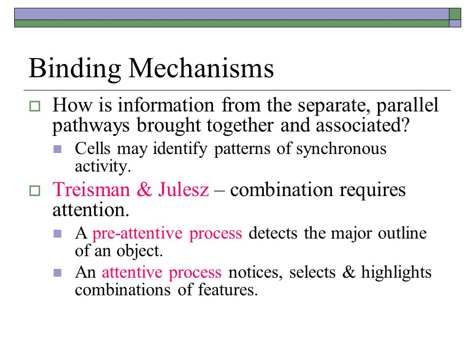 Binding Mechanisms How is information from the separate, parallel pathways brought together and associated