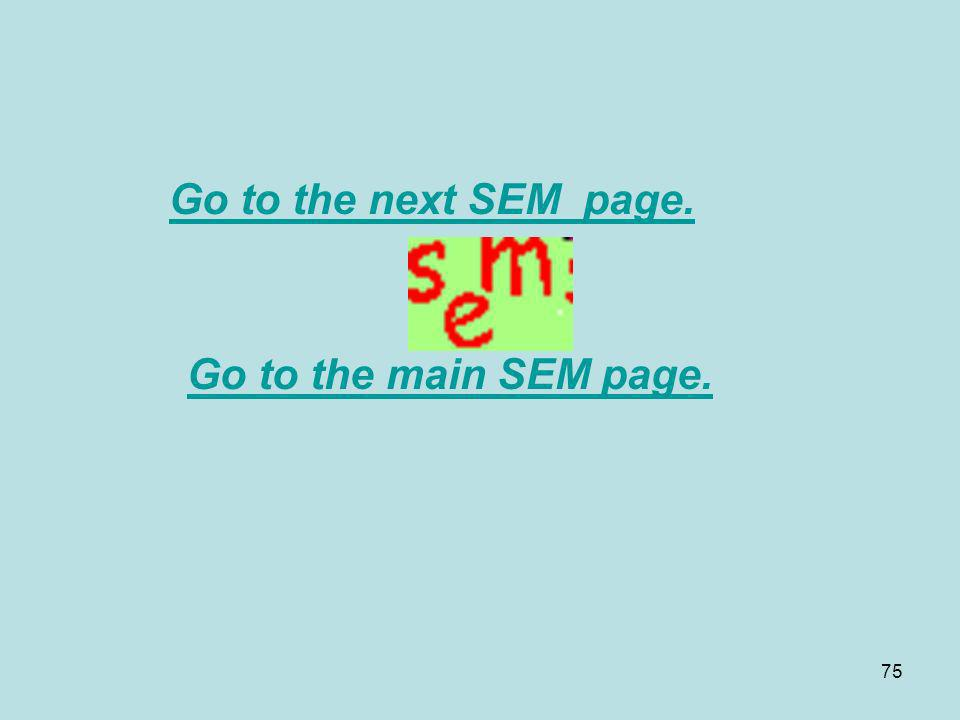 Go to the next SEM page. Go to the main SEM page.