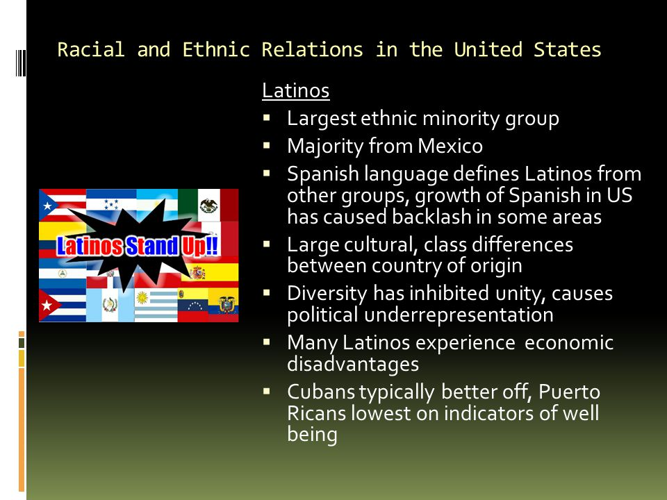 Racial and Ethnic Relations in the United States