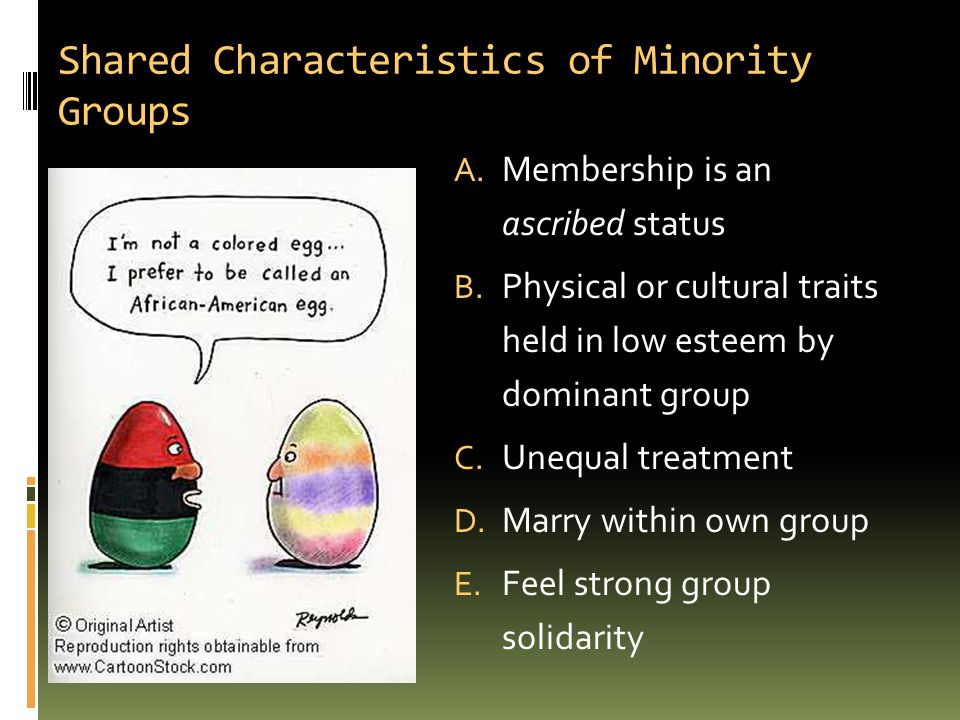 Shared Characteristics of Minority Groups