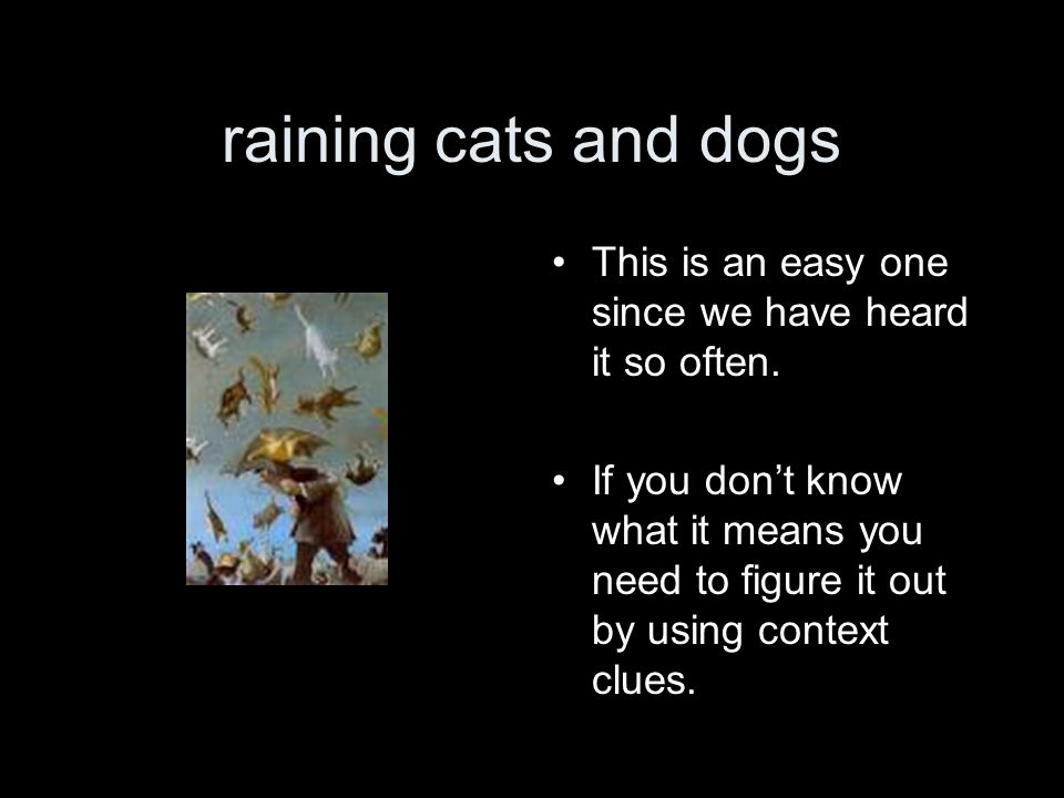 raining cats and dogs This is an easy one since we have heard it so often.