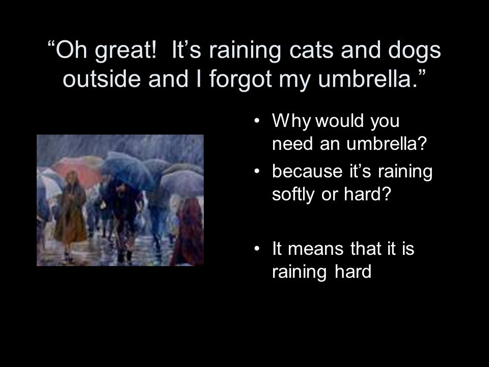 Oh great. It's raining cats and dogs outside and I forgot my umbrella