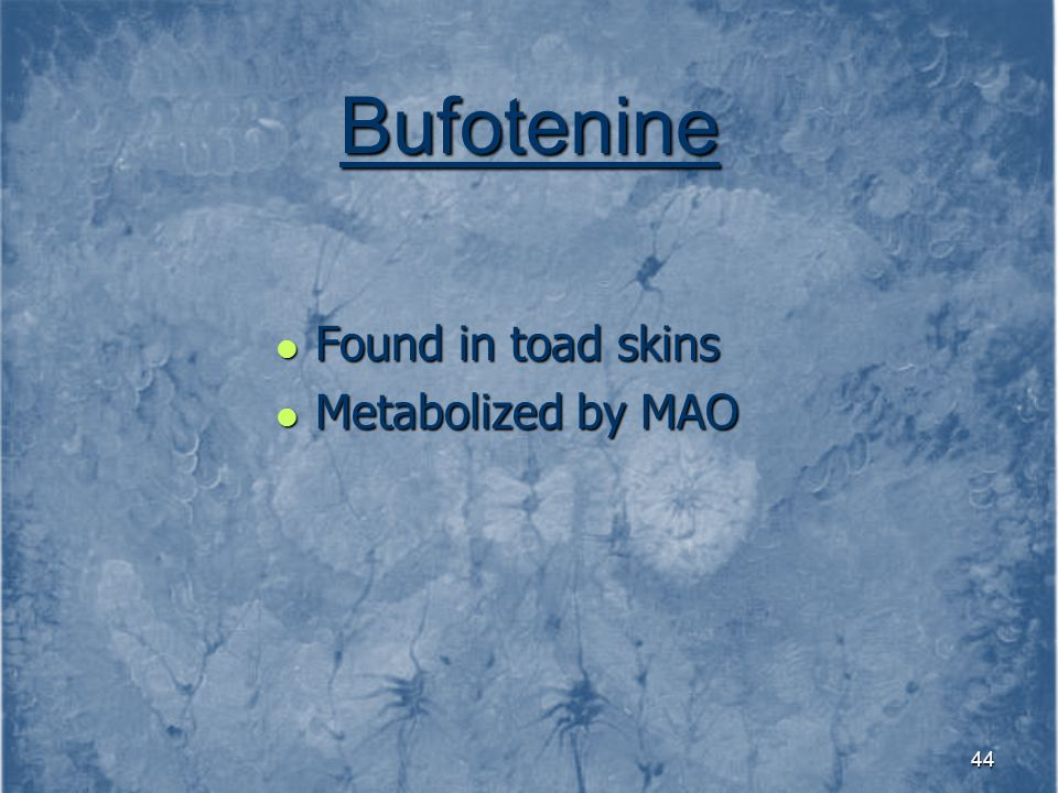 Bufotenine Found in toad skins Metabolized by MAO