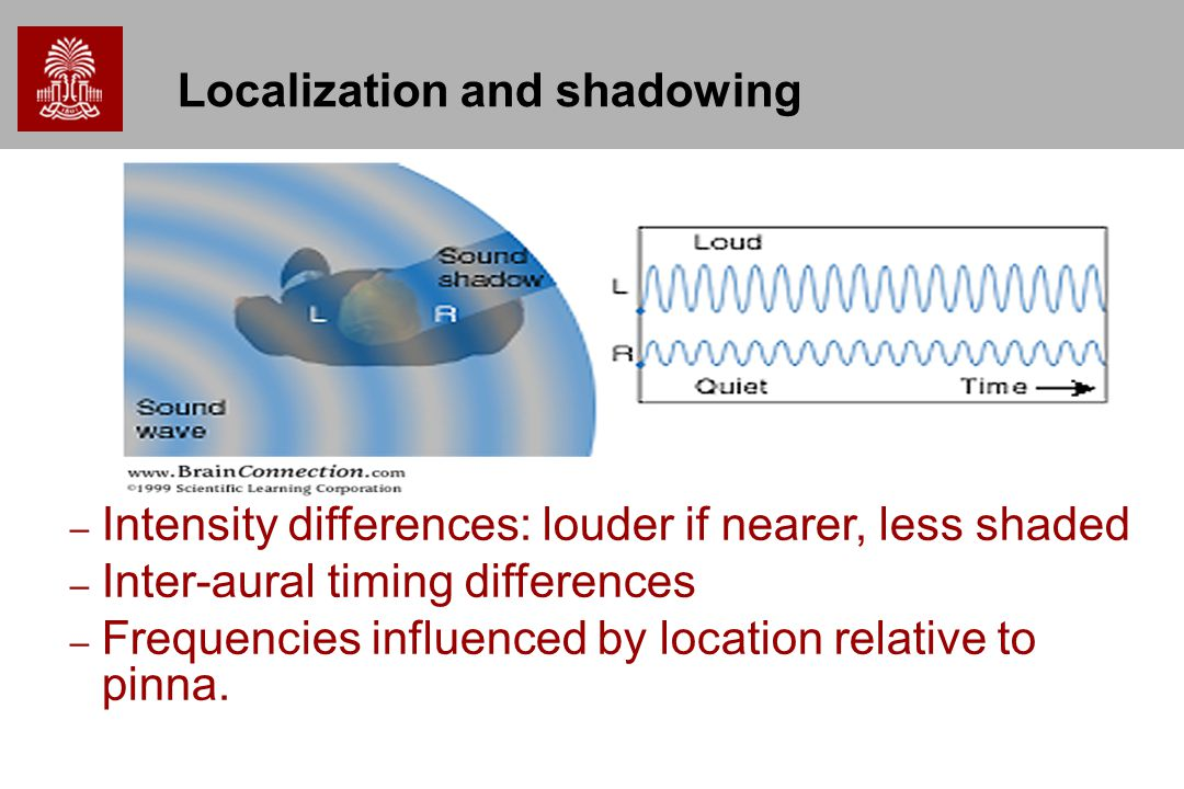 Localization and shadowing