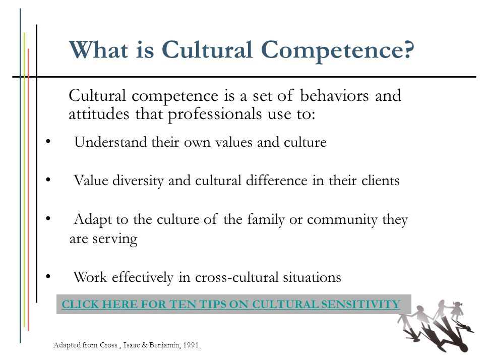 What is Cultural Competence