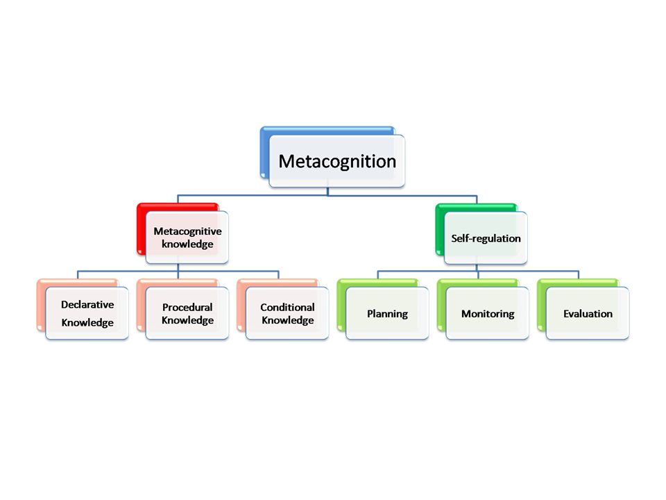Metacognitive knowledge is knowledge that we hold about our own thinking, and the thinking of other people. We are usually able to report metacognitive knowledge if we are asked about our own thinking and it includes things like: