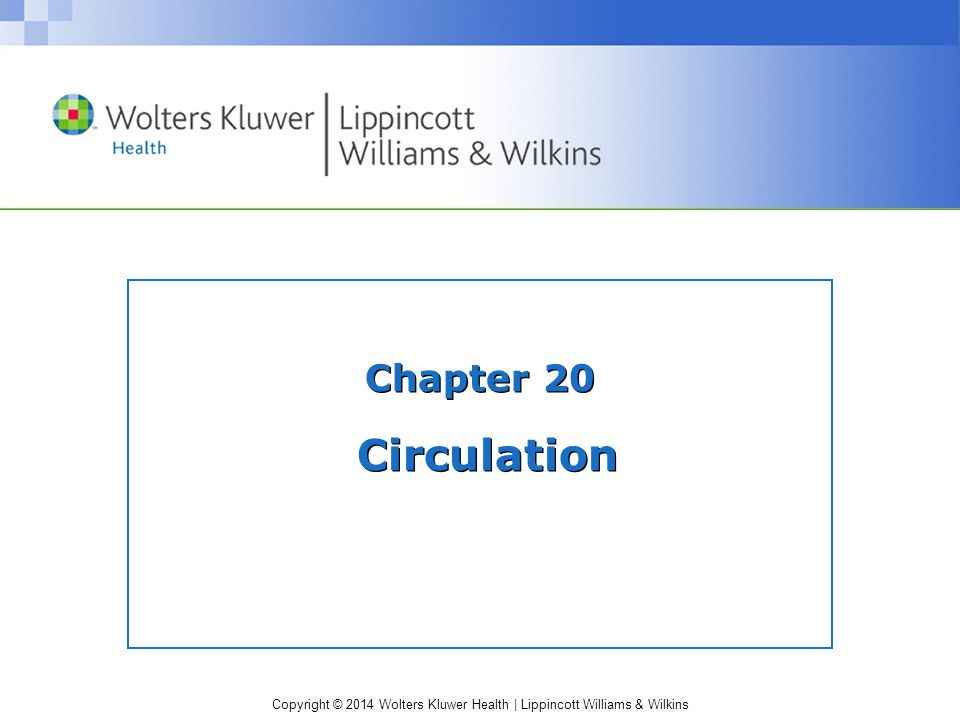 Chapter 20 Circulation
